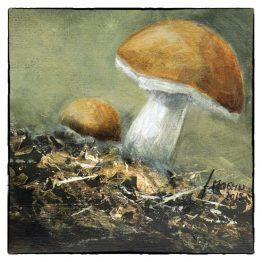 Kaart-Kunstkaart van schilderij Paddestoel Paddenstoel Atelier for Hope Wenskaarten