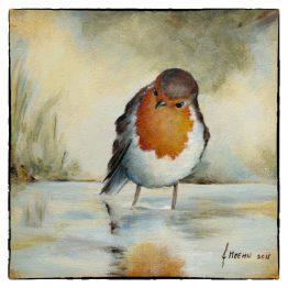 kaart - wenskaart Roodborstje in water. Atelier for Hope kaarten vogels