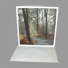 rouwkaart bemoediging kaart Bospad, licht door de bomen